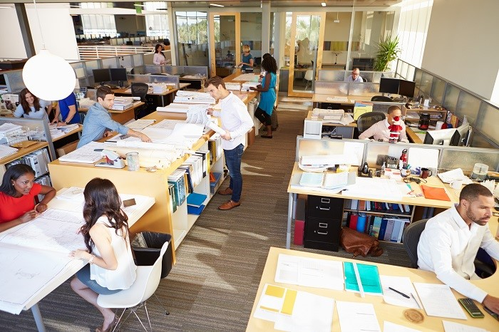 Important Things That Every Startup Office Needs