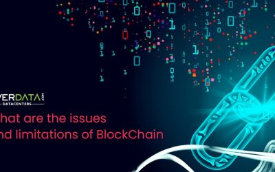 What are the issues and limitations of BlockChain